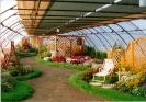 Výstava Čimelice 2002_30