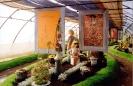 Výstava Čimelice 2002_33