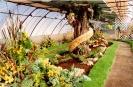 Výstava Čimelice 2002_34