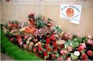 Výstava Čimelice 2002_48