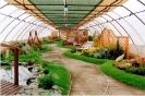 Výstava Čimelice 2002_53