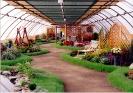 Výstava Čimelice 2002_60