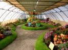 Výstava květin Čimelice 2004_11