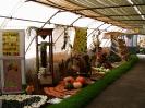 Výstava květin Čimelice 2004_16