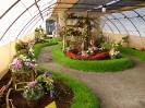 Výstava květin Čimelice 2004_19