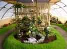 Výstava květin Čimelice 2004_20