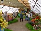 Výstava květin Čimelice 2004_38