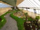 Výstava květin Čimelice 2004_3