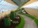 Výstava květin Čimelice 2004_46