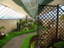 Výstava květin Čimelice 2004_49