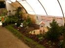 Výstava Čimelice 2009