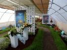 Výstava Čimelice 2013